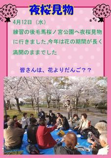 夜桜見物NTT踊りの会修正分.jpg